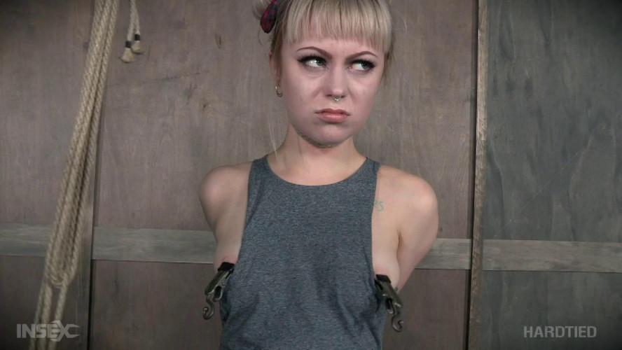 BDSM Rigged ,Anna Tyler
