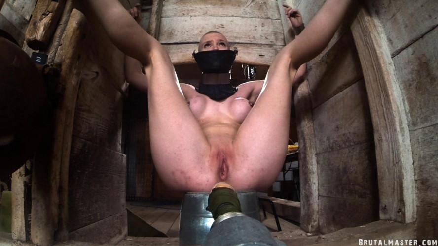 BDSM BrutalMaster - Greyhound - Barn Torture Electric