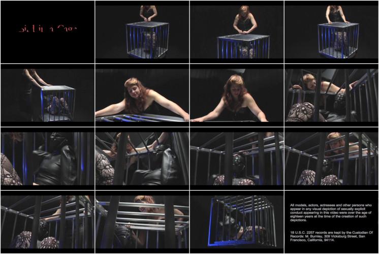 BDSM Amanda Wildefyre - Bird In A Cage