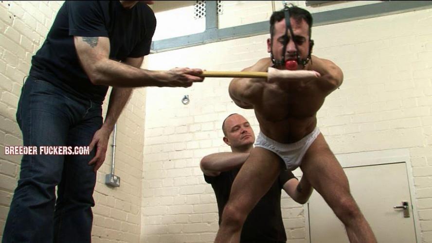 Gay BDSM Best Gay Bdsm from BreederFuckers vol. 38
