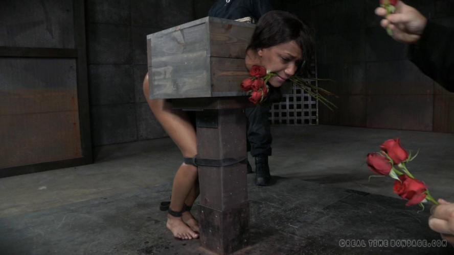 BDSM Nikki Darling, Abigail Dupree high
