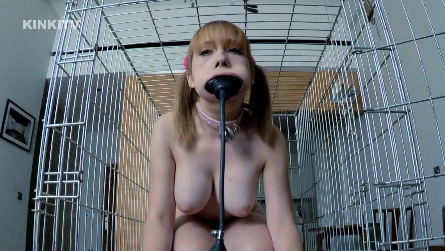 BDSM Best New Bdsm Petgirls Collection part 1
