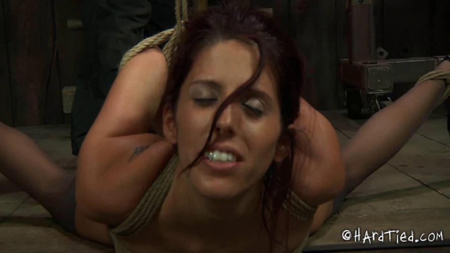 BDSM What Happened?