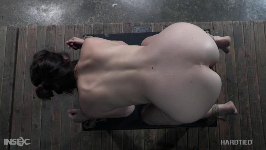 BDSM Sovereign Syre