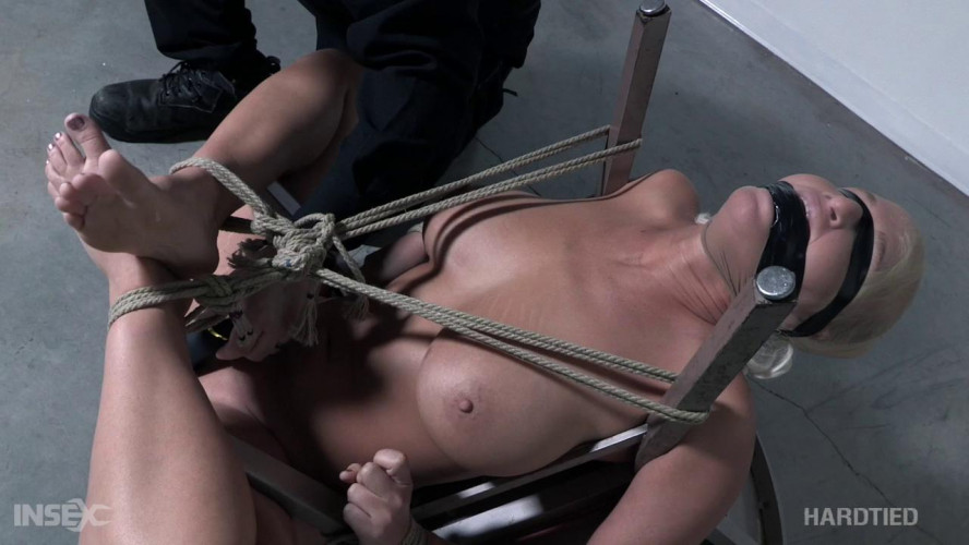 BDSM Chaired