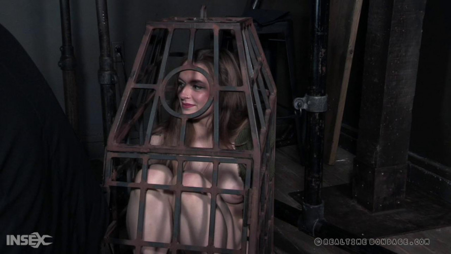 BDSM Spreadable Part 1