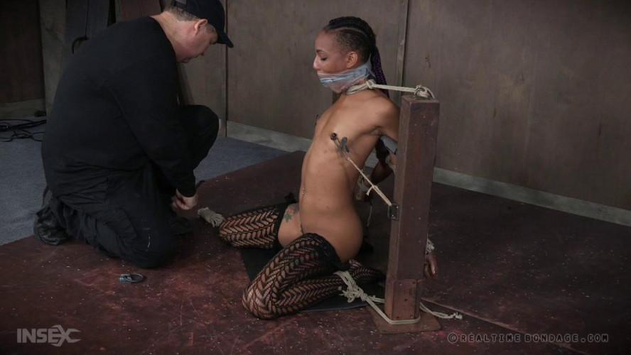 BDSM Back for More Part 1