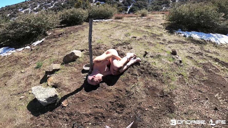 BDSM Down And Dirty Rachel Greyhound