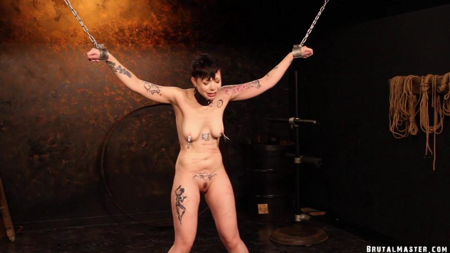 BDSM BrutalMaster - Garbage - New Meat First Time