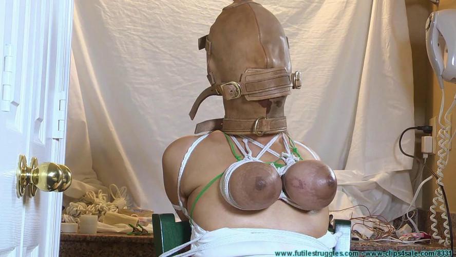 BDSM The Client