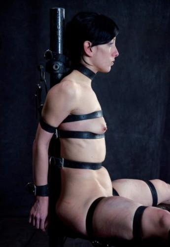 BDSM Queen of Pain - Elise Graves