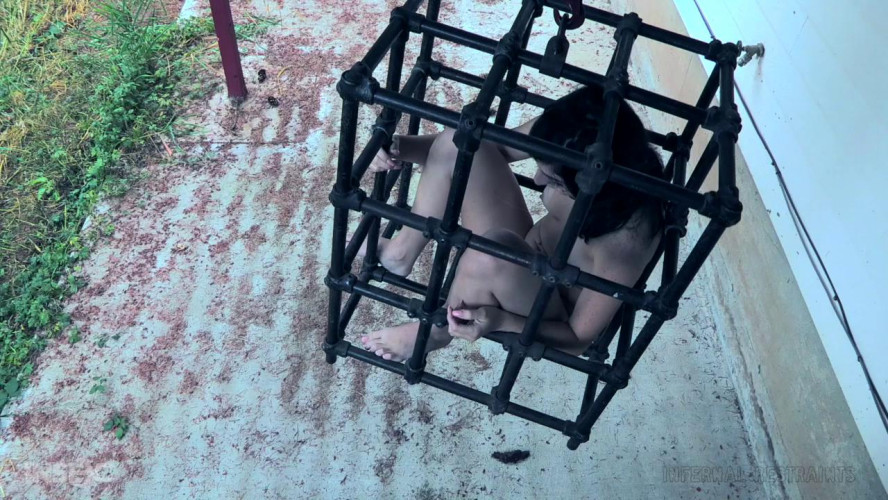 BDSM Taboo Torment Part 2