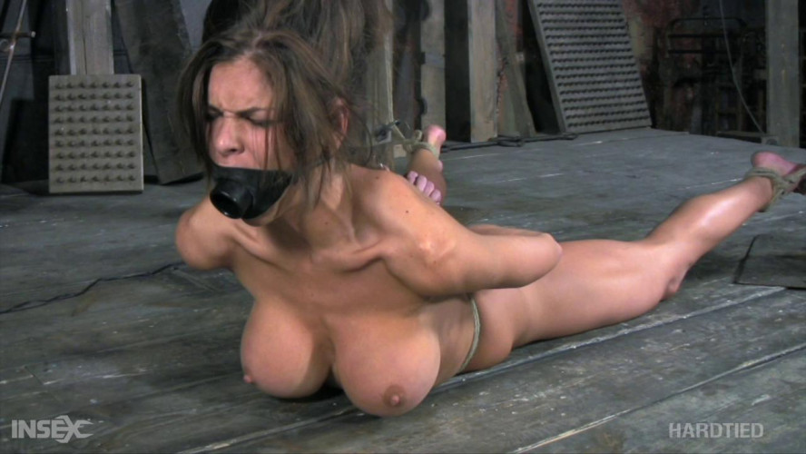 BDSM Hunter - Hurting Hunter