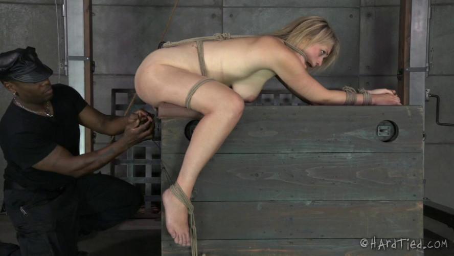 BDSM Poor Winnie Rider Just Wants Permission to Cum