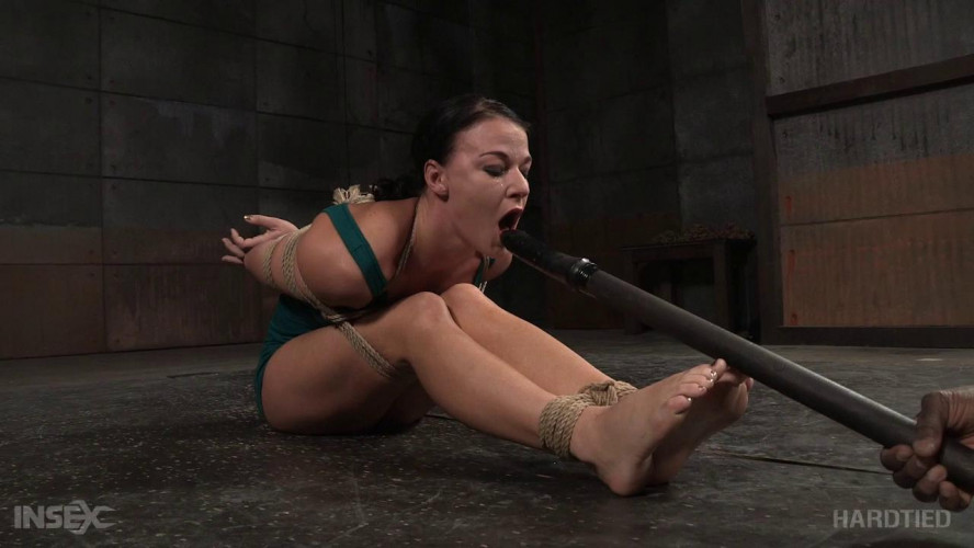 BDSM Fit To Be Tied 2
