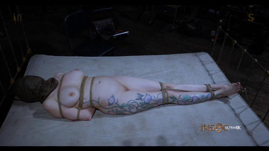 BDSM Transit Coffin Episode 3