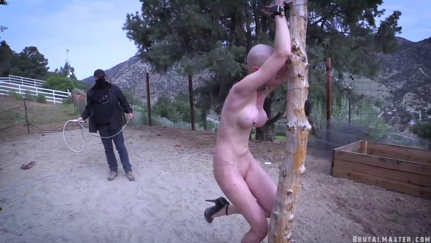 BDSM BrutalMaster - Greyhound - A Hot Day At The Ranch