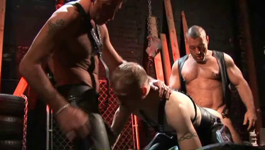 Gay BDSM ShockWave