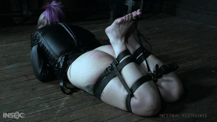 BDSM Boxed