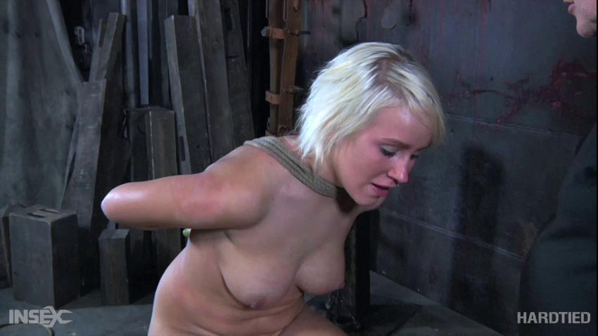 BDSM Extra Credit Part One - Sophie Ryan