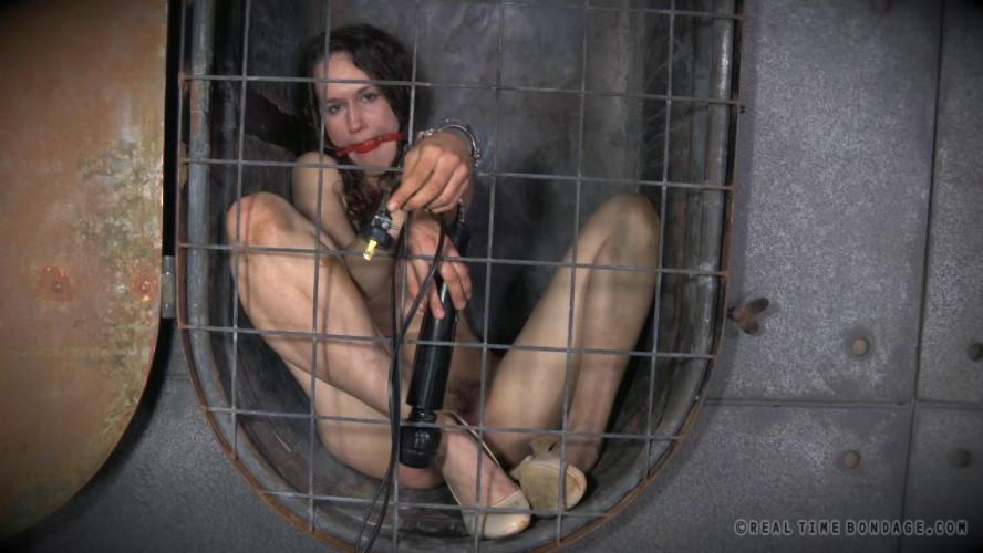 BDSM Cunt Puppy Part
