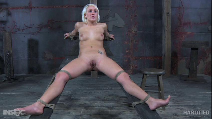 BDSM HdT Extra Credit Part One - Sophie Ryan