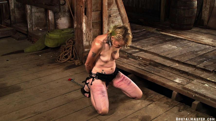 BDSM The Pig balls & ass holes