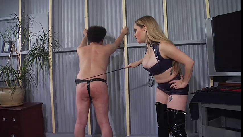 Femdom and Strapon Kink School An Intermediate Guide To BDSM