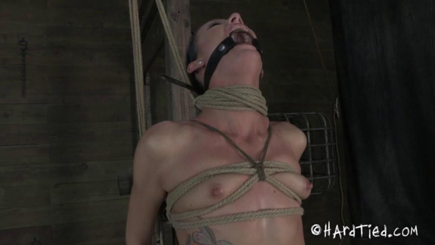 BDSM Vibration