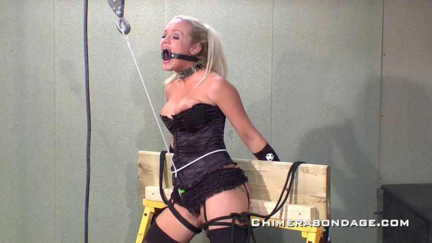 BDSM Mega Hot Gold Excellent Unreal Collection Of Chimera Bondage. Part 6.