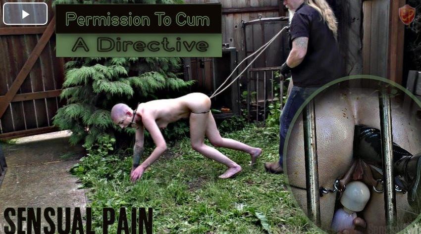 BDSM Permission To Cum Directive