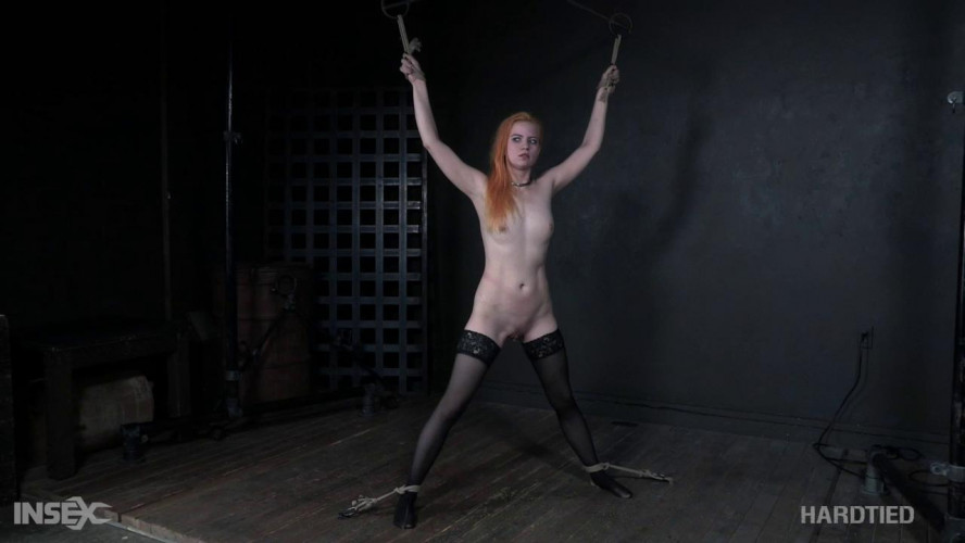 BDSM HdT Peach Pi  - Alani Pi (2019)