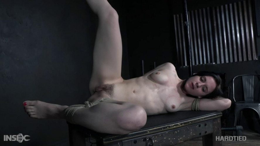 BDSM Bend or Break - Audrey Holiday