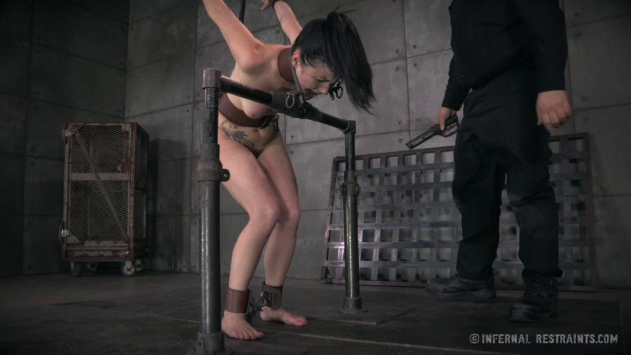 BDSM How Far Will A Desperate Girl Go For A Job?