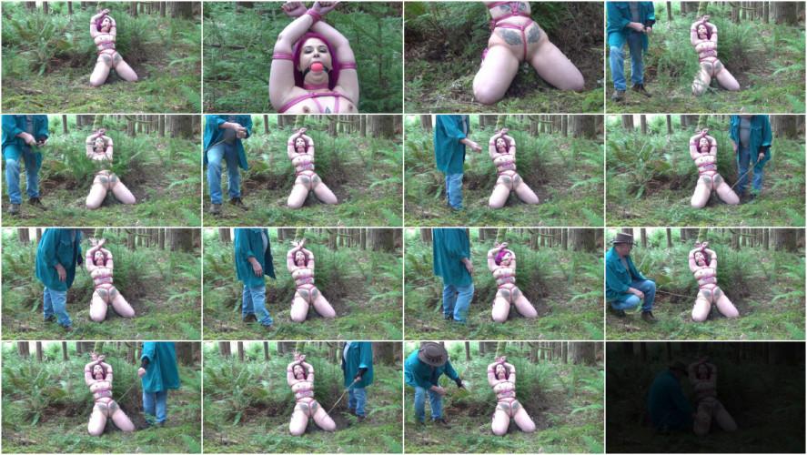 BDSM Viridian Vixen Photoshoot Bonus