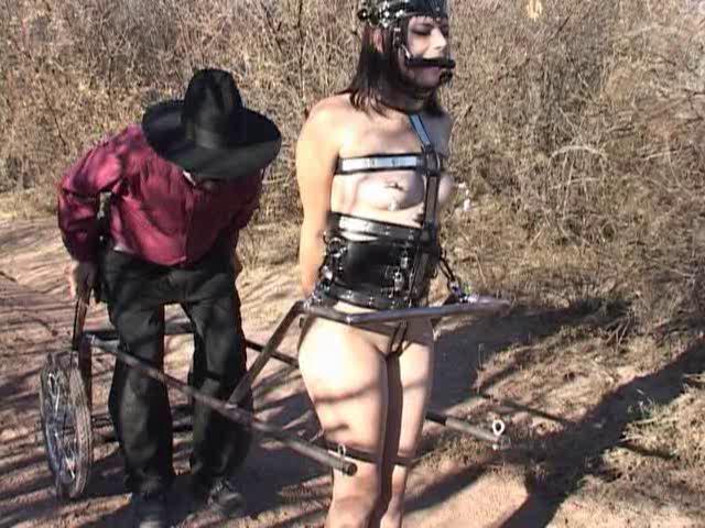 BDSM Young Ponygirl: Sadie Simone