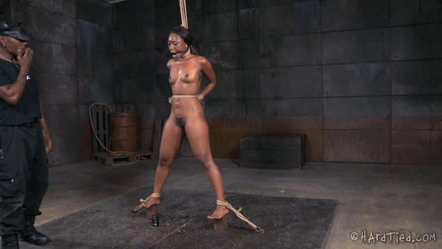 BDSM Chanell Heart iHeart Beatings
