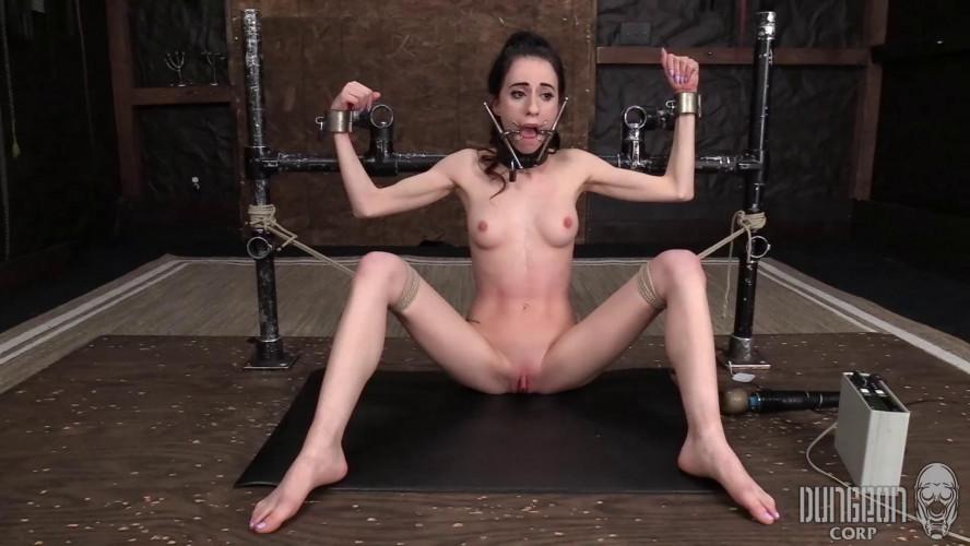 BDSM Amber Wildee - Earning Her Keep