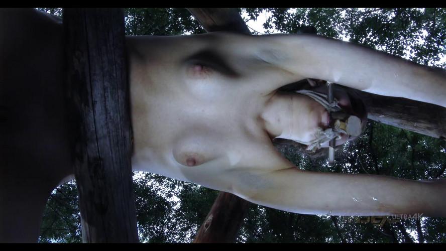 BDSM Outdoor Punishment For Sexy Sierra Cirque