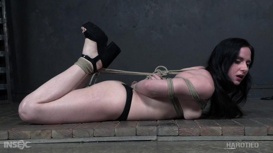 BDSM HdT  Bend or Break - Audrey Holiday