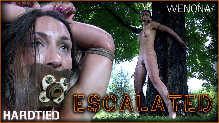 BDSM Wenona - Escalated