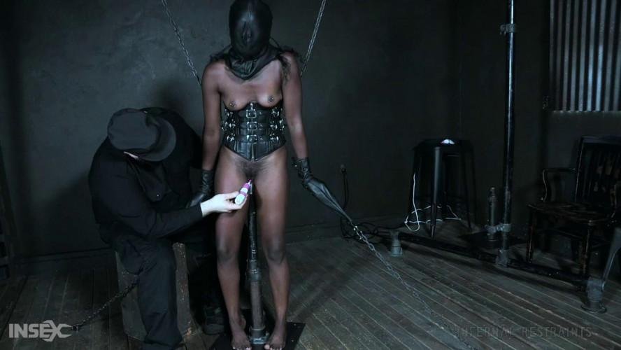 BDSM Police