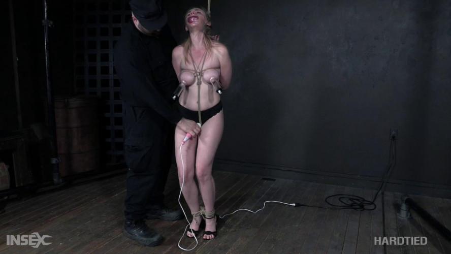 BDSM The Cause
