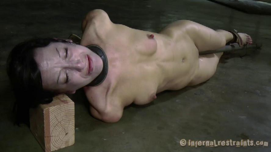 BDSM Grace Under Pressure Part Two