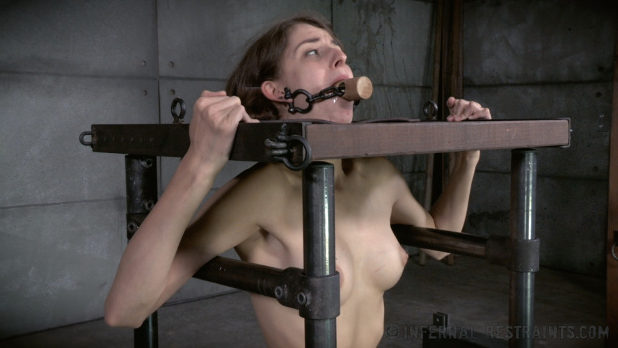 BDSM Put A Lid On It  - Willow Hayes