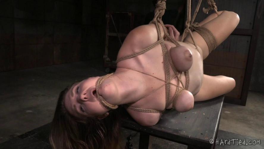BDSM Return of the Screamer