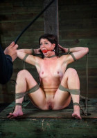 BDSM X Marks The Spot  - Mia Gold