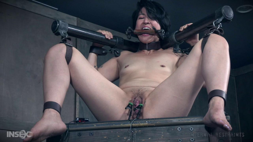 BDSM Buckets of Fun, Mia Torro