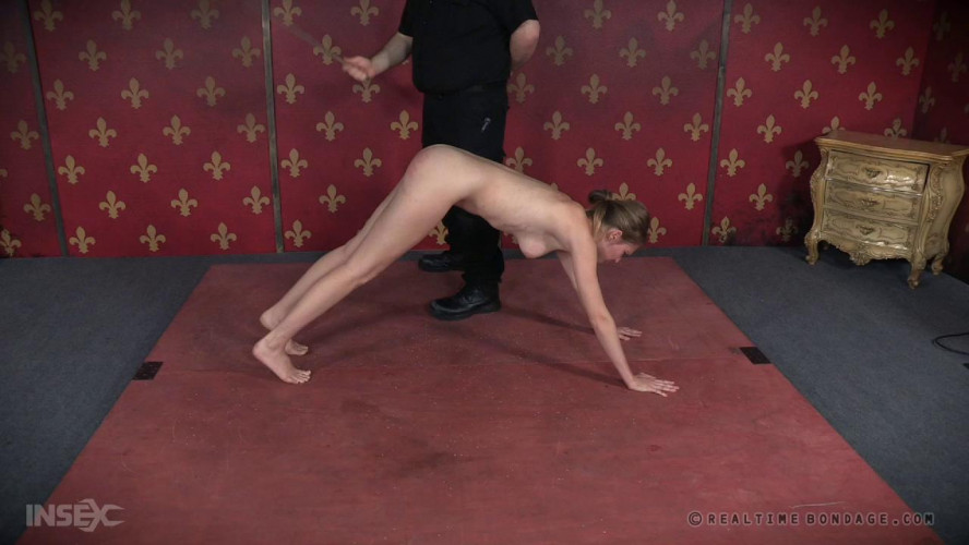BDSM Insatiable Ass Part 3