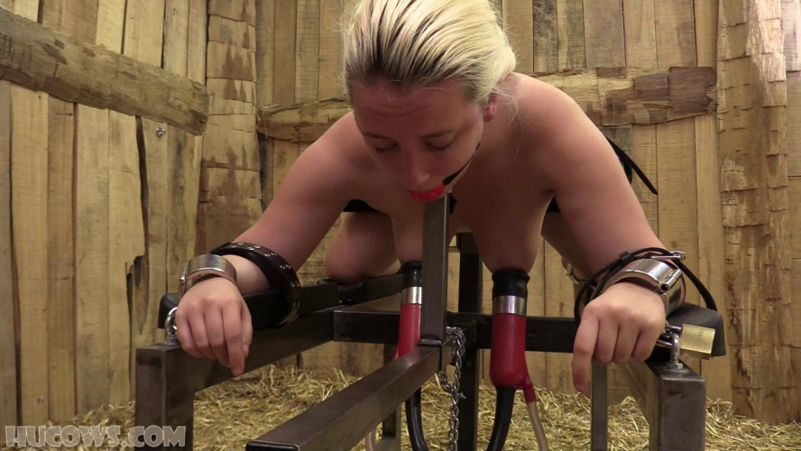 BDSM Vina – spanking results